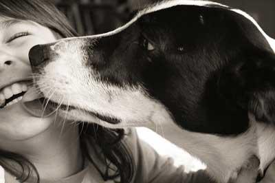 dog-kiss2
